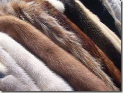 как выбрать шубу, определить качество меха