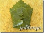 листья для долмы, грузинская долма