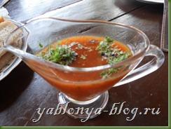 соус ткемали, кисло-сладкий соус, соусы к мясу, соус из алычи, кислосладкий соус, абхазская кухня, рецепт соус ткемали