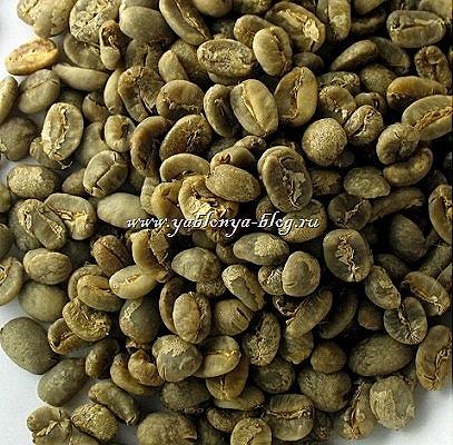 зеленый кофе отзывы диетологов