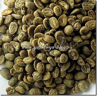 зеленый кофе отзывы, зеленый кофе с имбирем